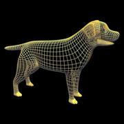 Friendly Dog 3d model