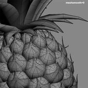 pineapple.zip 3d model
