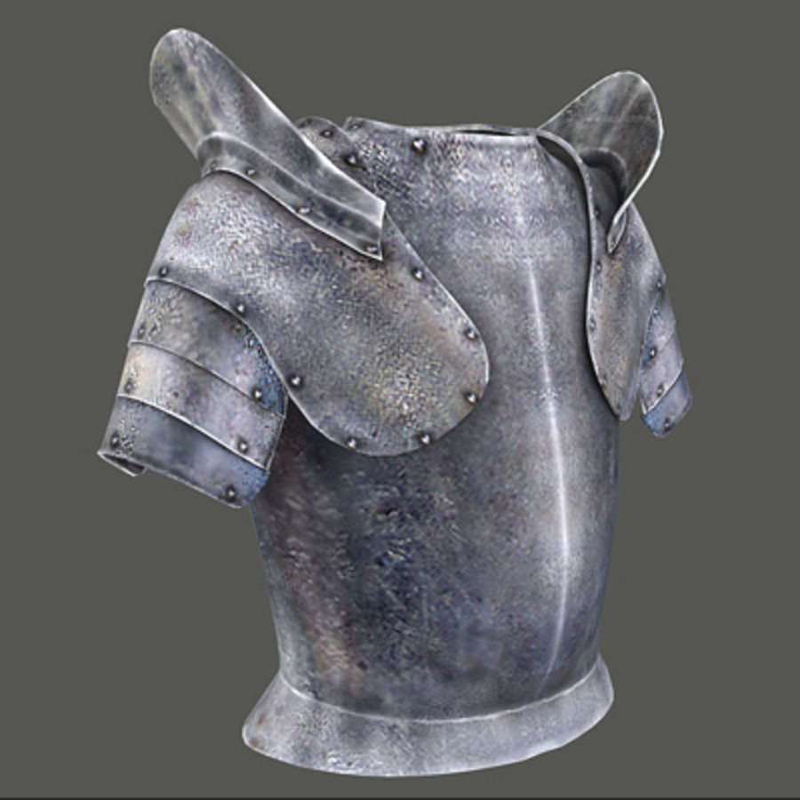 armor.3DS royalty-free 3d model - Preview no. 1
