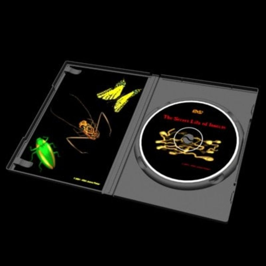 Ultimate DVD Case royalty-free 3d model - Preview no. 4