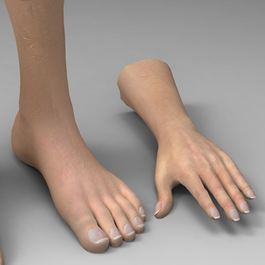 Leg Hand royalty-free 3d model - Preview no. 3