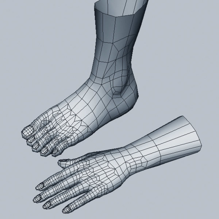 Leg Hand royalty-free 3d model - Preview no. 5
