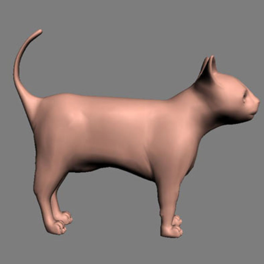 猫 royalty-free 3d model - Preview no. 4