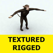 monkey.max 3d model