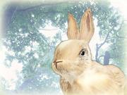 Easter Rabbit 3d model