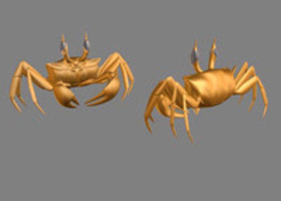 Ghost crab 3D Model $5 - .obj .3ds - Free3D