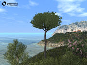 Рекламные щиты XfrogPlants: Средиземноморье 3d model