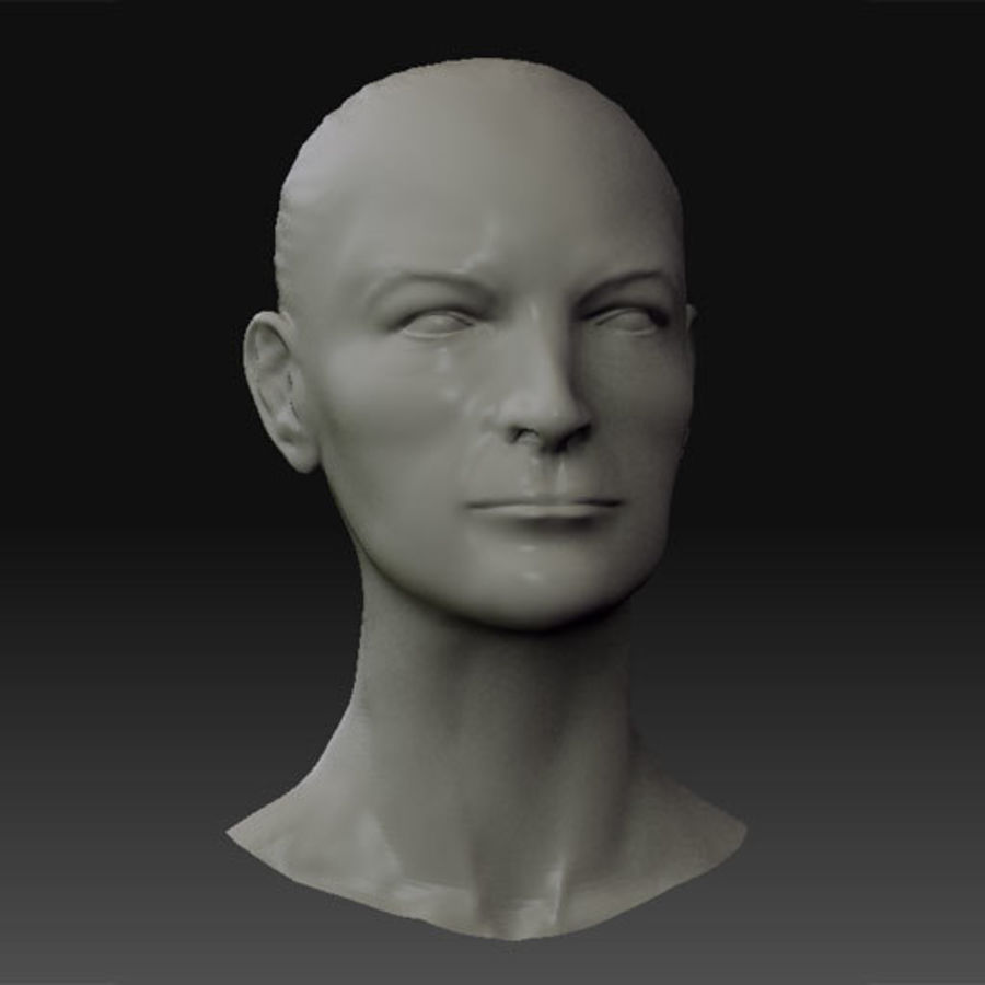 Female Head royalty-free 3d model - Preview no. 1