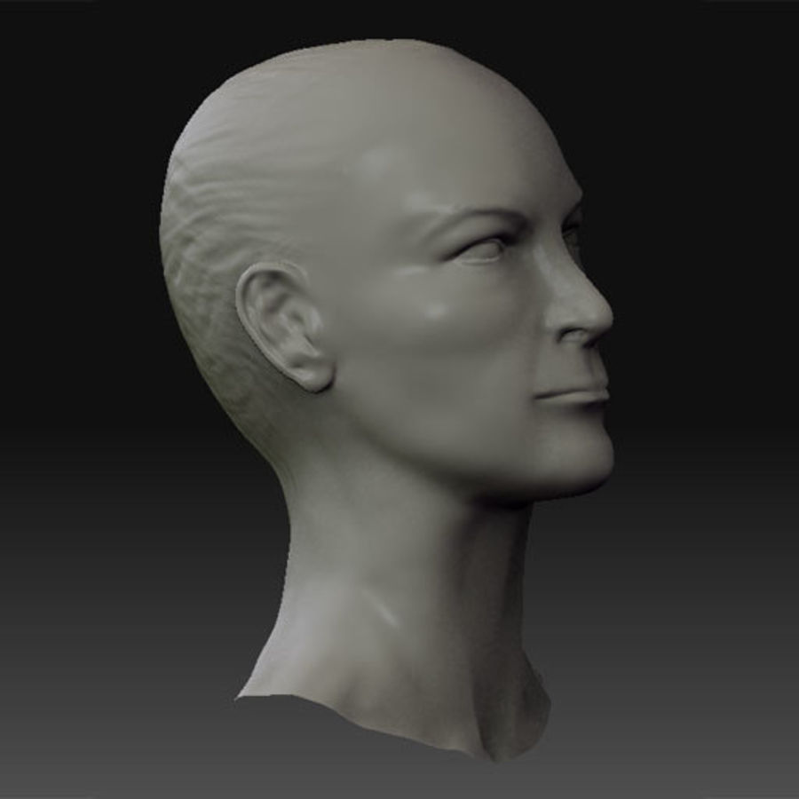 Female Head royalty-free 3d model - Preview no. 3