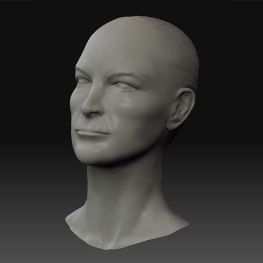 Female Head royalty-free 3d model - Preview no. 2