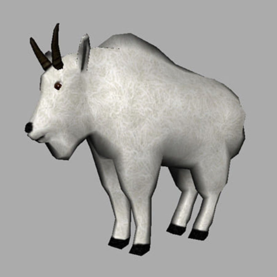 Mountain Goat royalty-free 3d model - Preview no. 1