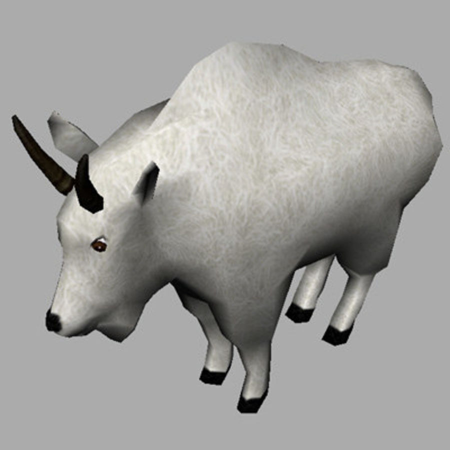Mountain Goat royalty-free 3d model - Preview no. 3