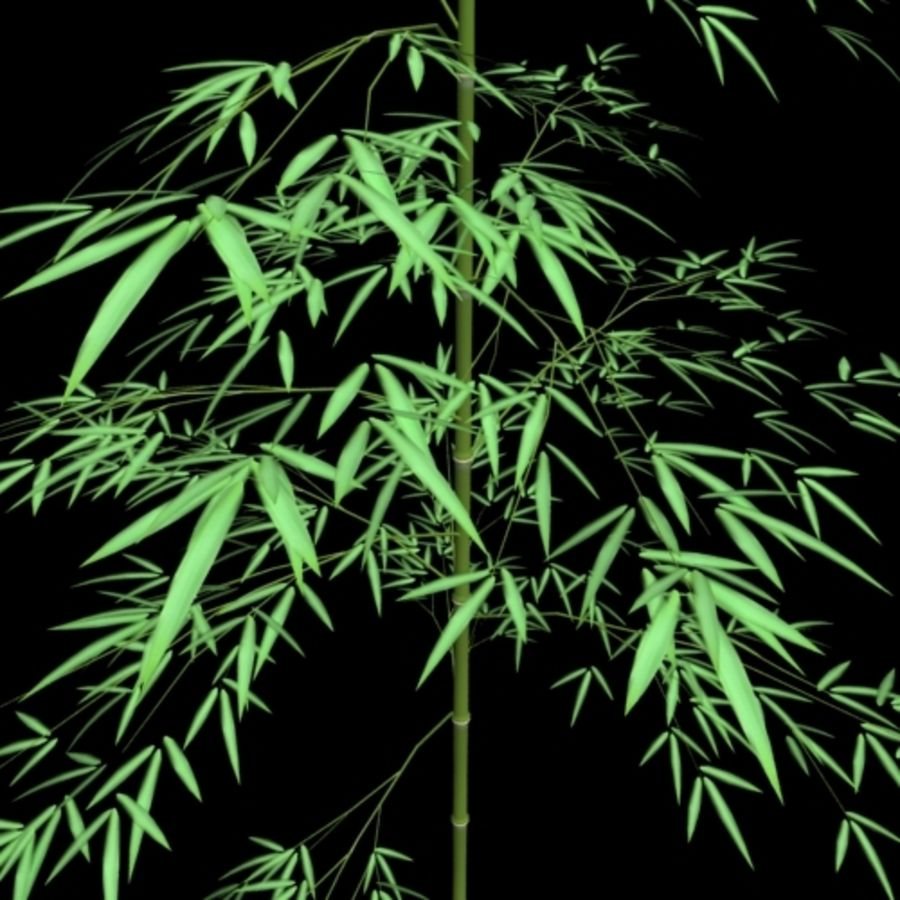outdoor bamboo royalty-free 3d model - Preview no. 1