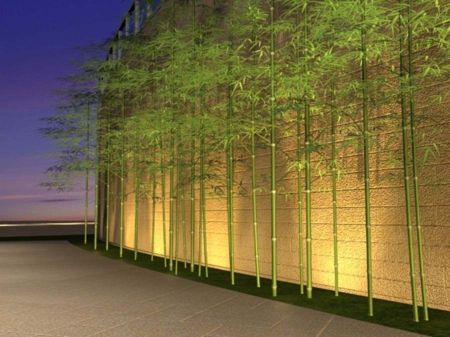 outdoor bamboo royalty-free 3d model - Preview no. 2