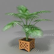 Palm 3ds.zip 3d model