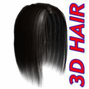 Hair_04.zip 3d model