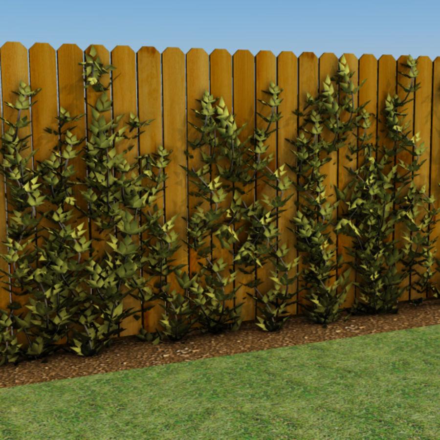 Growing Vines 3d Model 9 Max 3ds Free3d