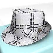 Hat_01.zip 3d model