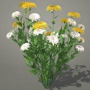 Chrysanthemen 3ds 3d model