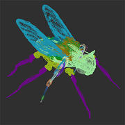 Time Fly.zip 3d model