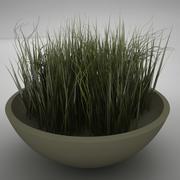 życie roślinne 3d model