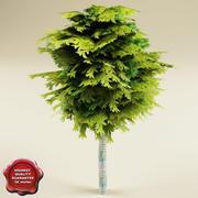 Low Poly tree V3 3d model