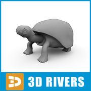 Elephant tortoise by 3DRivers 3d model