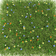 Meadow Mix 3d model