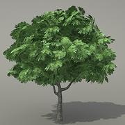 Tree s1 3ds 3d model
