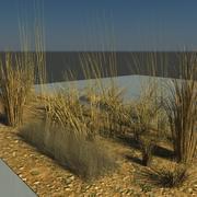 Physical Brown Grasses.zip 3d model
