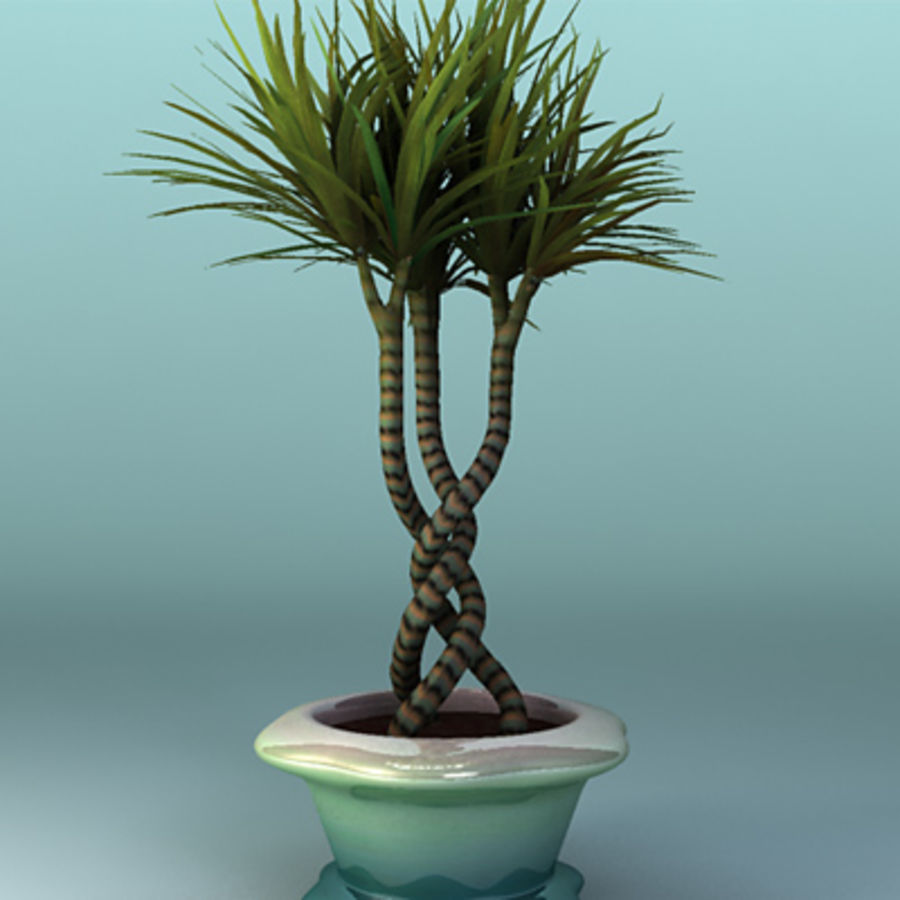 asian bamboo plant royalty-free 3d model - Preview no. 1
