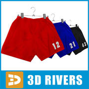 Shorts set  by 3DRivers 3d model