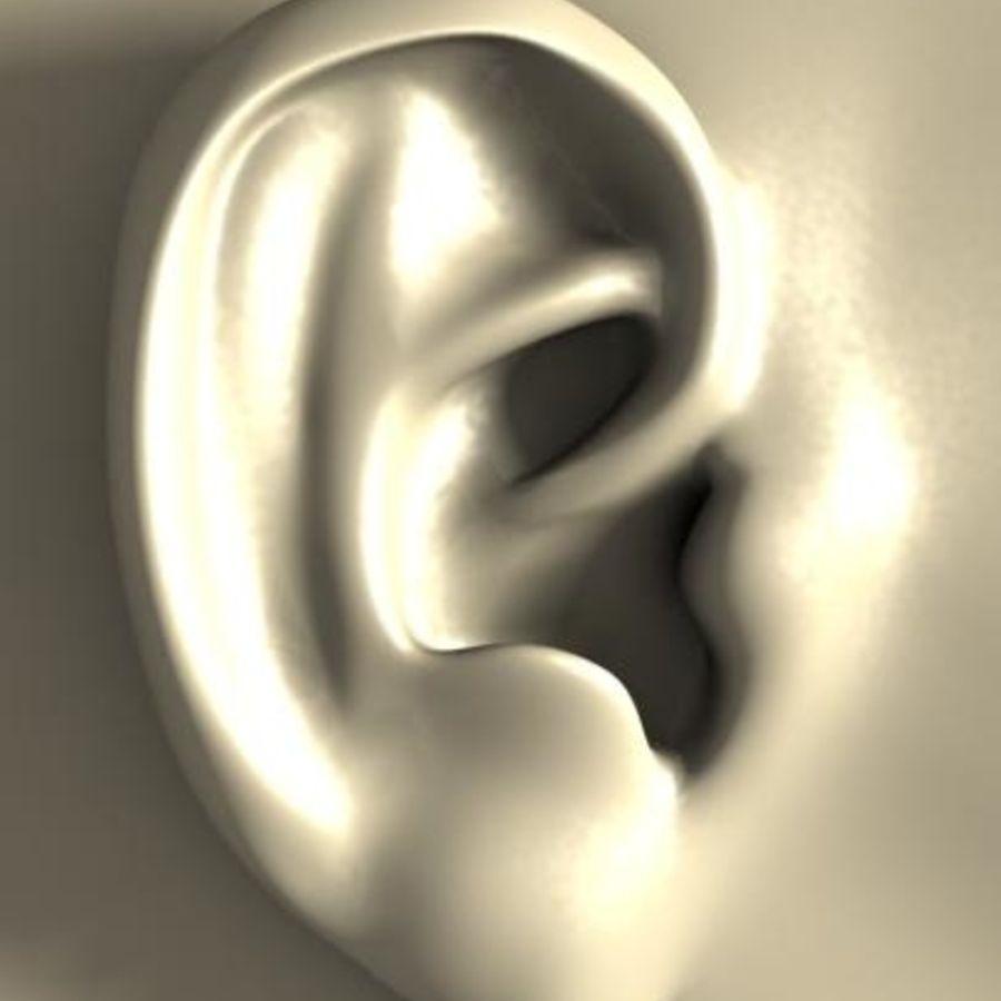耳 royalty-free 3d model - Preview no. 1