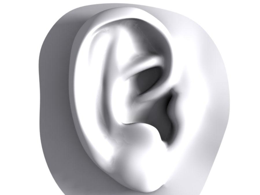 耳 royalty-free 3d model - Preview no. 6