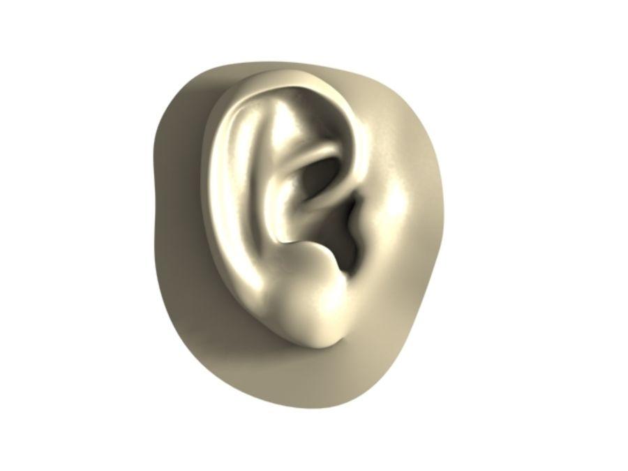 耳 royalty-free 3d model - Preview no. 3