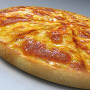 Double Cheese Pizza! 3d model