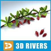 小说由3DRivers 3d model
