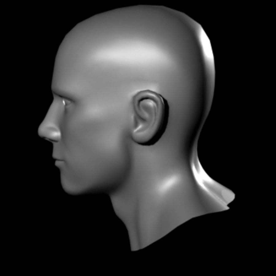 Head.ma royalty-free 3d model - Preview no. 4