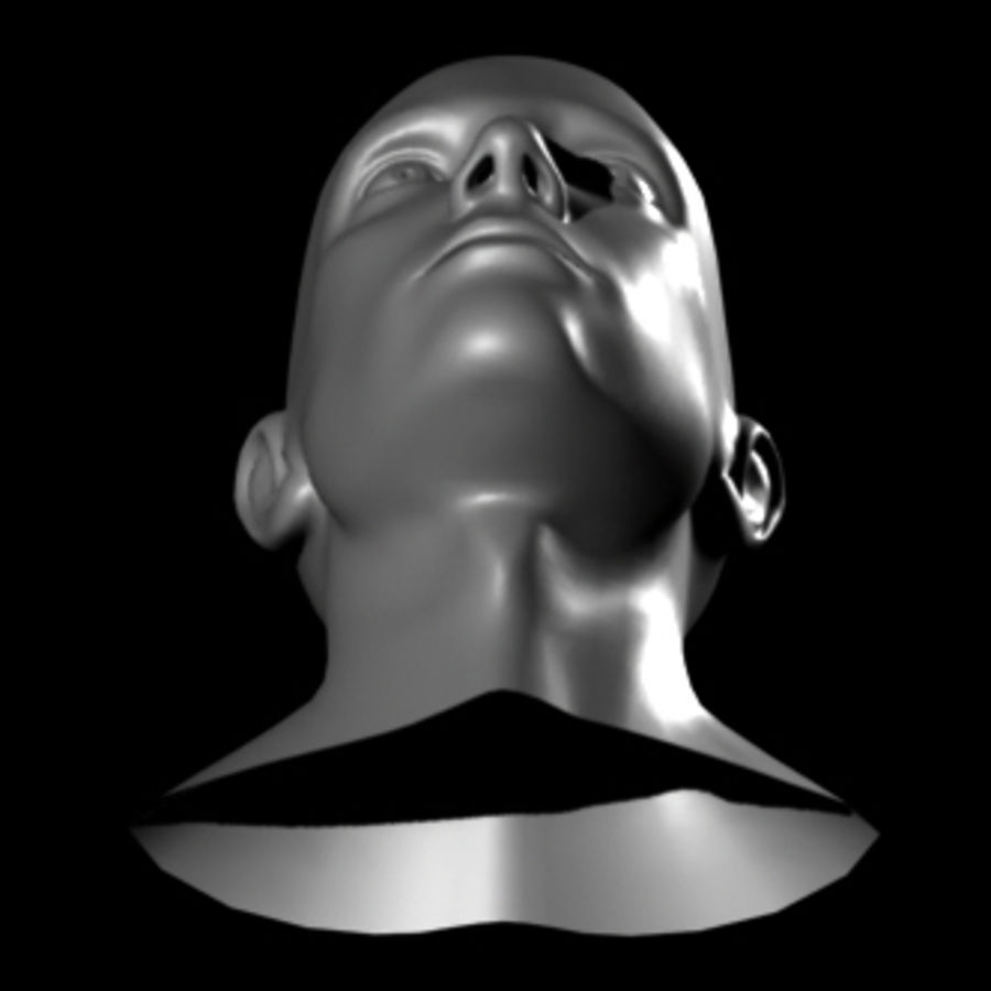 Head.ma royalty-free 3d model - Preview no. 5