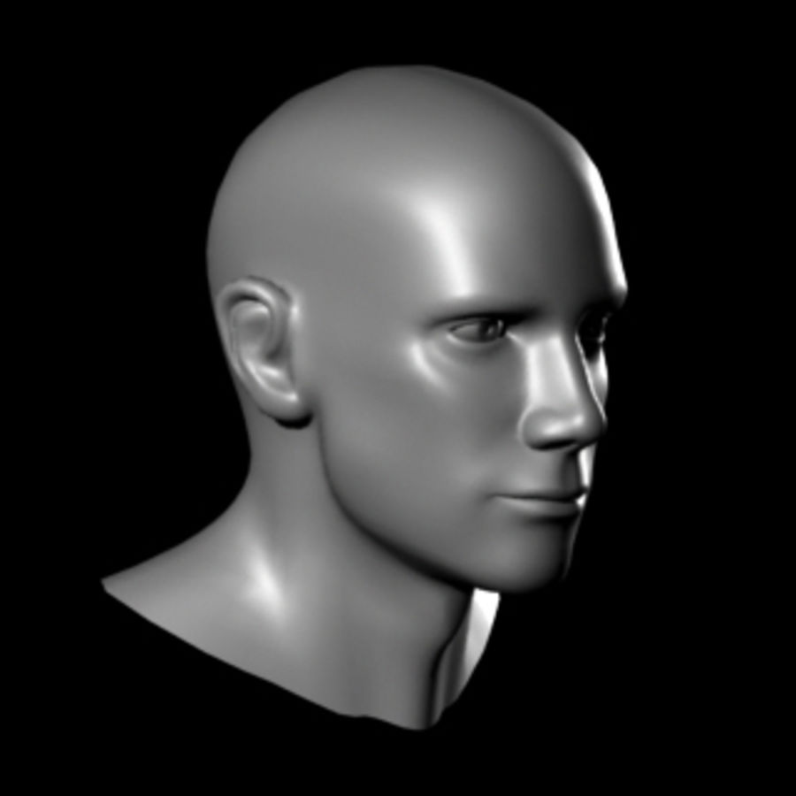 Head.ma royalty-free 3d model - Preview no. 6