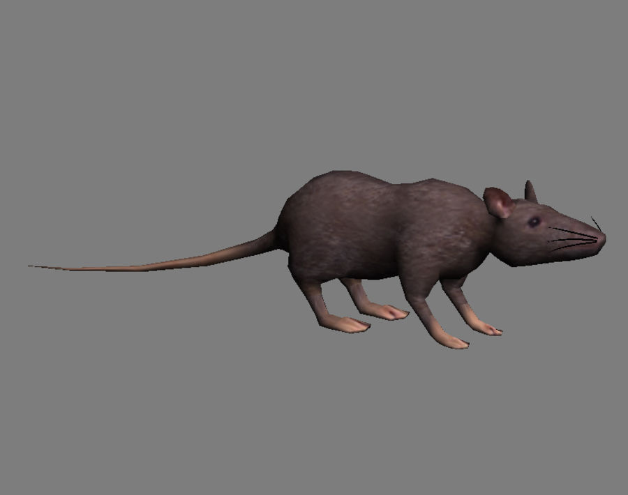 3D Rat  - game model - lowpoly royalty-free 3d model - Preview no. 2