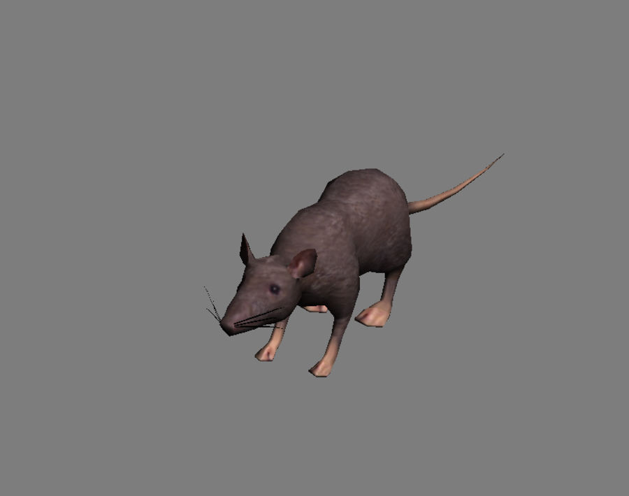 3D Rat  - game model - lowpoly royalty-free 3d model - Preview no. 3