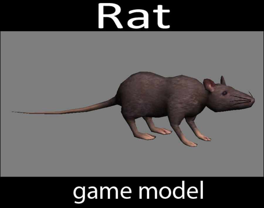 3D Rat  - game model - lowpoly royalty-free 3d model - Preview no. 1