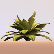 leafy green plant 3d model