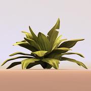 groene plant 3d model