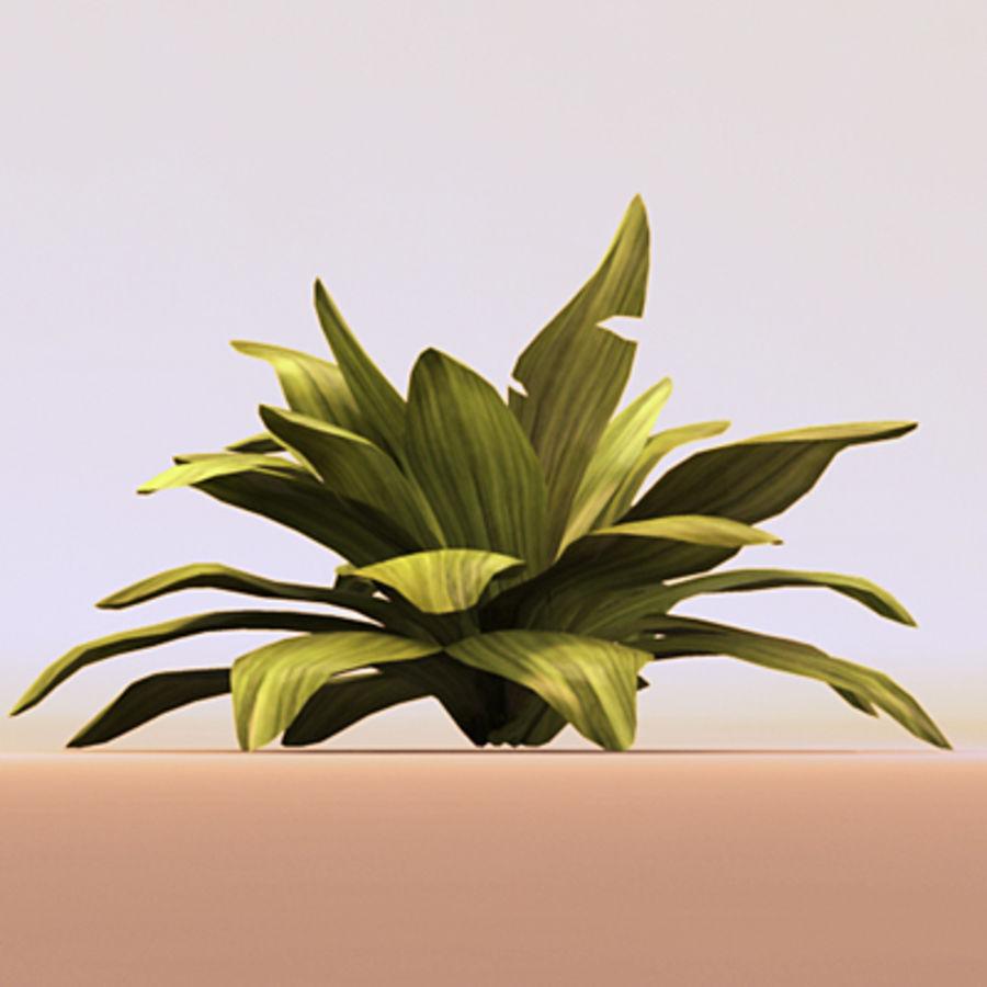 绿叶绿色的植物 royalty-free 3d model - Preview no. 1