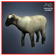 SHEEP lowpoly 3d model