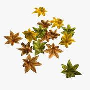 Fallen Leaves 2 3d model