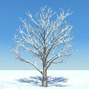 SnowTree 4 3d model