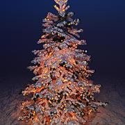 Christmas fir 3d model